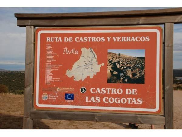 Castro de Las Cogotas