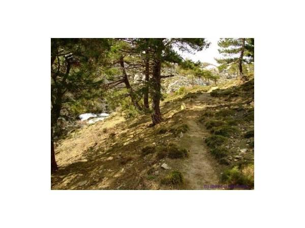 Sendero Cerro del Buitre