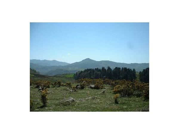 Subida al Monte Atxuria