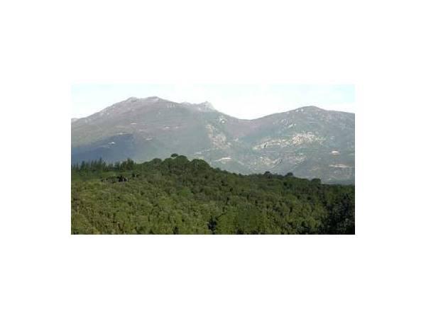 Parque del Montnegre i el Corredor