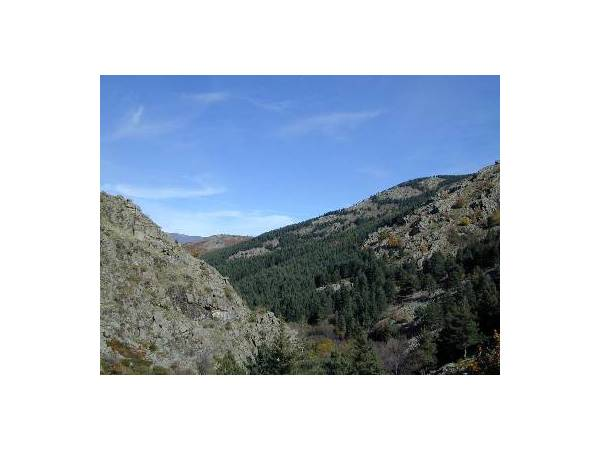 Del Monasterio del Paular a las Cascadas del Purgatorio